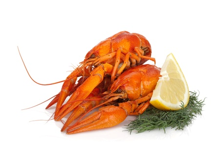 Boiled crayfishes with lemon slice and dill. Isolated on a white background Stock Photo - 14971419