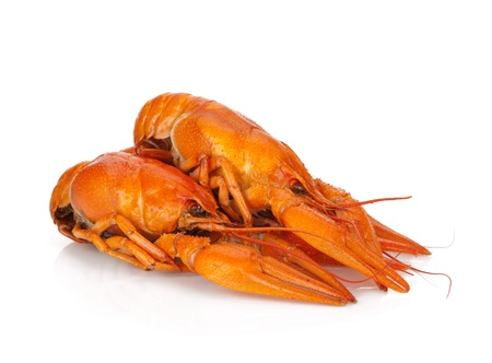 Three boiled crayfishes. Isolated on a white background Stock Photo - 15076591