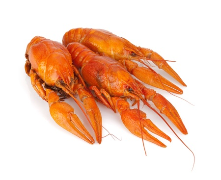 Three boiled crayfishes. Isolated on a white background Stock Photo - 15500084