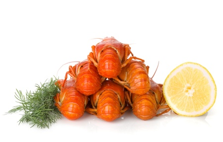 Boiled crayfishes with lemon slice and dill  Isolated on a white background Stock Photo - 15372602