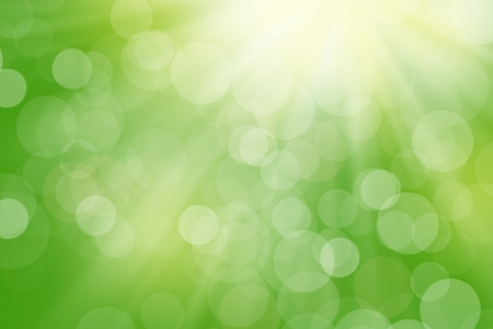 de focus: Nature blurred bokeh background with sunlight