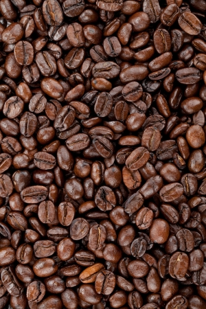 large bean: Hires coffee beans closeup background