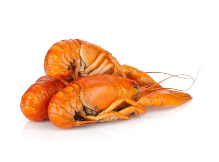 Three boiled crayfishes. Isolated on a white background Stock Photo - 16413583