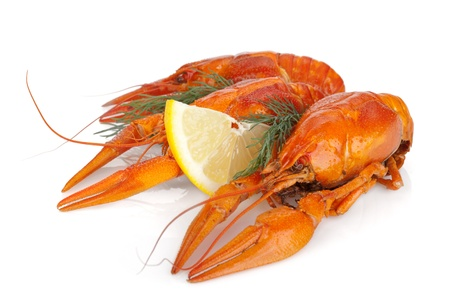 Boiled crayfishes with lemon slice and dill. Isolated on a white background Stock Photo - 16901955