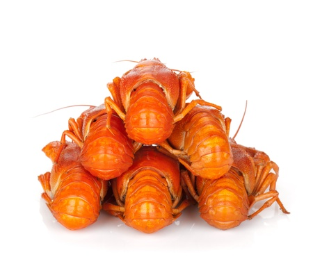 Boiled crayfishes. Isolated on a white background photo