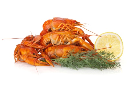 Boiled crayfishes with lemon slice and dill. Isolated on a white background Stock Photo - 19433154