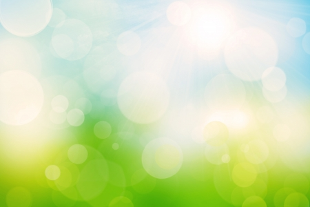 Nature blurred bokeh background with sunlight photo