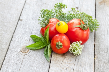Fresh ripe tomatoes and herbs on garden table photo