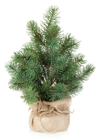 fake christmas tree: Fake mini Christmas tree. Isolated on white background