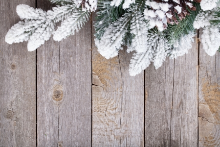 Fir tree covered with snow on wooden board photo