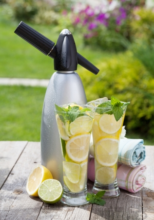siphon: Homemade lemonade with fresh citruses and siphon on garden table Stock Photo