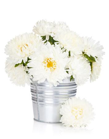 flowerpot: White aster flowers.