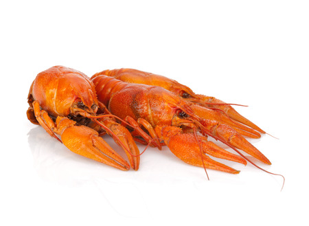 Three boiled crayfishes. Isolated on a white background photo