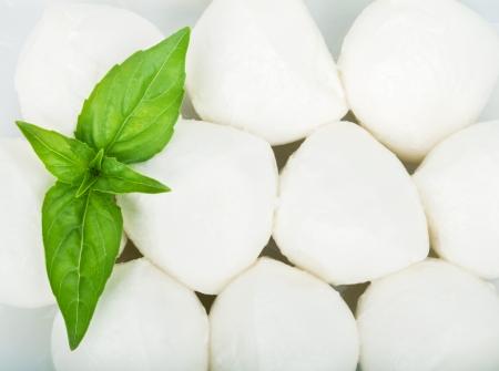 mozzarella cheese: Small pieces of mozzarella and basil closeup