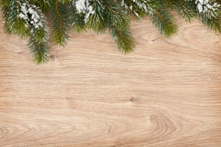 christmas snow: Christmas fir tree covered with snow on wooden board background