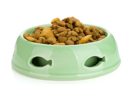 cat food in a bowl isolated on white background photo