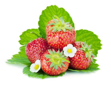 Four strawberry fruits with green leaves and flowers. Isolated on white background photo