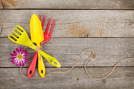 Garden tools with flower on wooden table background  photo