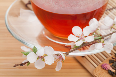 Japanese green tea and sakura branch over mat and bamboo table. Focus on front flower photo