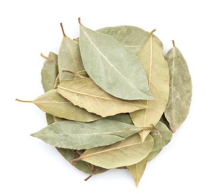 Aromatische laurierbladeren. Geà ¯ soleerd op witte achtergrond