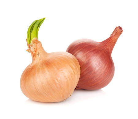 Fresh ripe onion. Isolated on white background Stock Photo