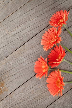 gerber: Wooden background with orange gerbera flowers and copy space