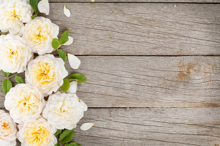 Wooden background with fresh rose flowers and copy space photo