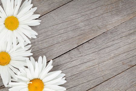 Daisy camomile flowers on wooden table background with copy space Imagens - 30487909