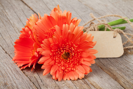 daisy flower: Orange gerbera flowers with tag on wooden table