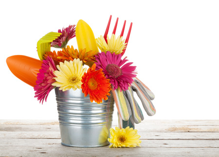 Colorful flowers and garden tools on wooden table. Isolated on white background photo