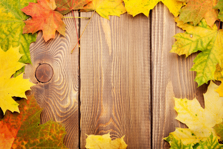 woden: Colorful maple leaves on woden background with copy space