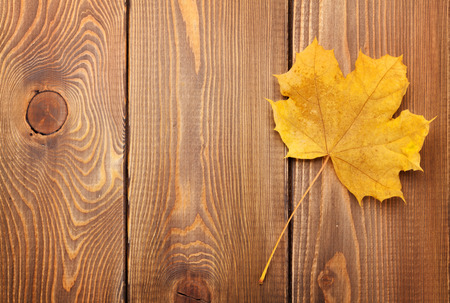 woden: Yellow maple leaf on woden background with copy space Stock Photo