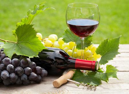 햇볕이 잘 드는 정원에서 포도의 무리와 함께 레드 와인 유리와 병