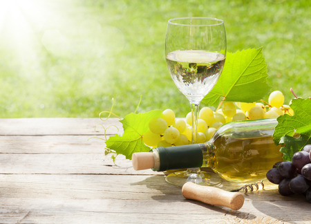 White wine glass and bottle with bunch of grapes in sunny garden photo
