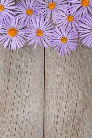 flores moradas: Fondo de madera con flores de color azul y espacio de la copia
