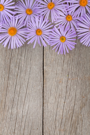 retro flowers: Wooden background with blue flowers and copy space