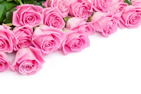 Valentinstag Hintergrund mit rosa Rosen. Isoliert auf weiß mit Kopie Raum Standard-Bild - 36801339