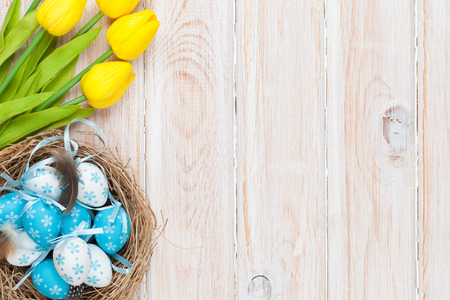 Easter background with blue and white eggs in nest and yellow tulips. Top view with copy space
