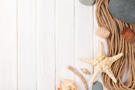 animals frame: Summer time sea vacation background with star fish and marine rope