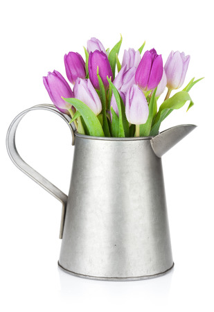 Purple tulip bouquet in watering can. Isolated on white background photo