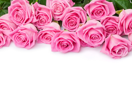 roses petals: Valentines day background with pink roses. Isolated on white with copy space