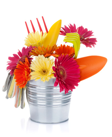 Colorful flowers and garden tools. Isolated on white background photo