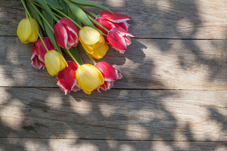 Colorful tulips on garden table. Top view with copy space photo