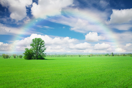 blue green landscape: Summer landscape with green grass field, blue sky with clouds and rainbow