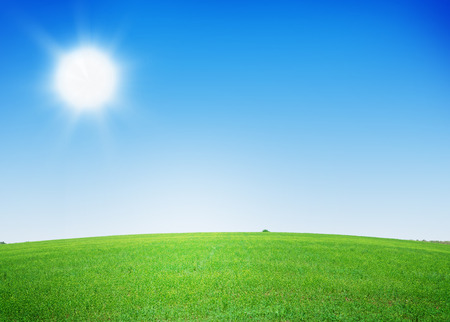 grass and sky: Green grass field and clear blue sky background
