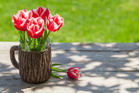 tulips in green grass: Colorful tulips on garden table with green grass bokeh