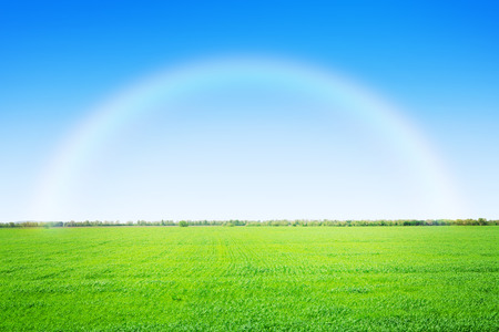 Green grass field and clear blue sky with rainbow photo