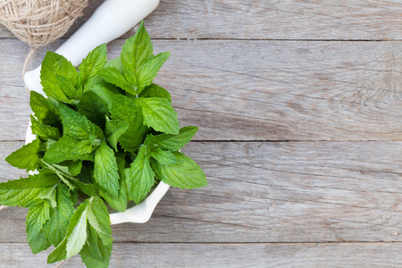 Fresh mint in mortar on garden table. Top view with copy space Foto de archivo
