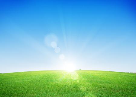 Endless green grass field and deep blue sky background Foto de archivo