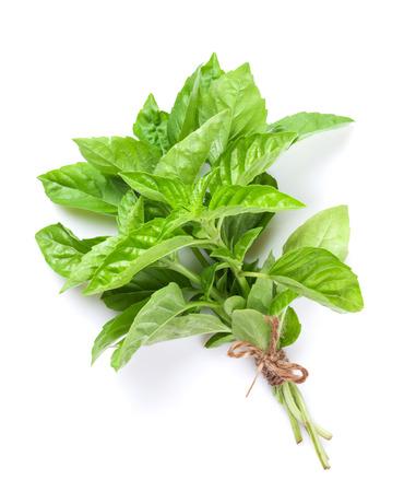 albahaca: Hierbas frescas del jardín, albahaca verde. Aislado en el fondo blanco Foto de archivo